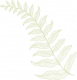 cropped-vertical-fern.png